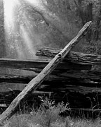 Split Rail Fence Photos - Broken Fence in Morning Light at Yosemite by Greg Matchick