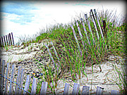 Sand Fences Photos - Broken Fences by Lori Lafargue