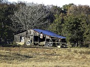 Shed Digital Art Metal Prints - Broken Shed at Walter River Metal Print by Jay Stephen