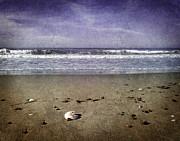 Laura Iverson - Broken Shell at Twilight