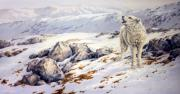 Wolf Howling Paintings - Broken Silence by Kathleen V  Butts
