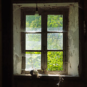 Frame House Framed Prints - Broken window. Framed Print by Bernard Jaubert