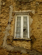 France Doors Posters - Broken Window Poster by Lainie Wrightson