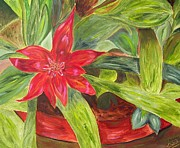 Maria Soto Robbins Art - Bromeliad Bloom II by Maria Soto Robbins