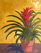 Maria Soto Robbins Art - Bromeliad  by Maria Soto Robbins