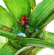 Tropical Wildlife Paintings - Bromeliad Microhabitat by Logan Parsons
