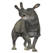 Rhinoceros Framed Prints - Brontotherium Is A Rhinocerous-like Framed Print by Corey Ford