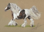 Gypsy Cob Framed Prints - Bronwyn Framed Print by Terry Kirkland Cook