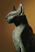 Domestic Scenes Framed Prints - Bronze Statue Of Cat Representing Framed Print by Kenneth Garrett