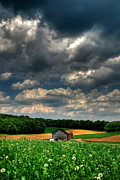 Farming Barns Posters - Brooding Sky Poster by Lois Bryan