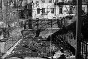Brooklyn Framed Prints - Brooklyn Back Yard Black and White Framed Print by Christopher Kirby