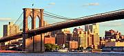 Bridge Photos - Brooklyn by Mitch Cat