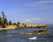 Baker Island Prints - Brooks Point with Mt. Baker Print by Derek Holzapfel