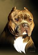 Pitbull Posters - Brown and White Pit Bull by Spano Poster by Michael Spano