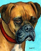 Boxer Framed Prints - Brown Boxer on Turquoise Framed Print by Dottie Dracos