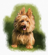 Westie Dog Paintings - Brown Cairn Westie portrait by Michael Greenaway