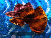 Black Drawings - Brown Fish in Abstract Art by Mario  Perez