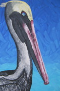 Nflavin Paintings - Brown Pelican by Nick Flavin