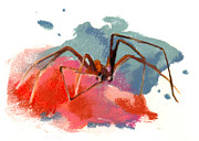 Insects Pastels - Brown Recluse Spider by Janice Lawrence