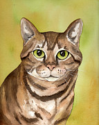 Watercolor Cat Paintings - Brown Tabby Cat by Cherilynn Wood