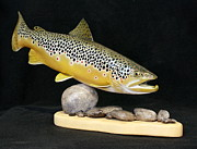 Fishing Sculpture Framed Prints - Brown Trout 14 inch Framed Print by Eric Knowlton