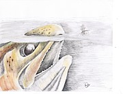 Fly Fishing Mixed Media Prints - Brown Trout  Print by H C Denney
