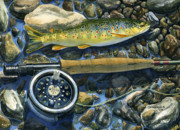 Lake Trout Posters - Brown Trout Rush Creek Poster by Mark Jennings