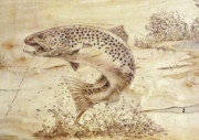 Trout Pyrography Prints - Brownie Print by Jerrywayne Anderson