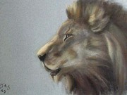Lion Pastels - Bruto by Karen Sanabria