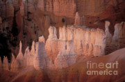 Natural Formations Posters - Bryce Canyon Hoodoos Poster by Sandra Bronstein