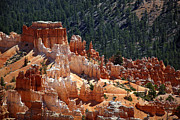 Nature Orange Prints - Bryce Canyon  Print by Jane Rix