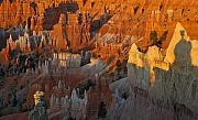 Bryce Canyon National Park Posters - Bryce Canyon Morning Poster by Bruce Gourley