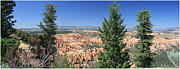 Margie Wildblood - Bryce Canyon Panoramic