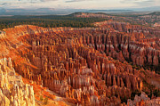 Terrain Posters - Bryce Canyon Poster by Phil