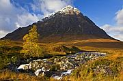Glen Etive Prints - Buachaille Etive Mor in Autumn Print by John McKinlay