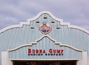 Bubba Metal Prints - Bubba Gump Metal Print by Viktor Savchenko