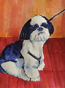 Dogs Drawings - Bubba by Imelda Gregov
