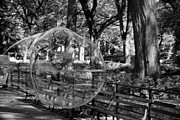 Metal Signs Digital Art Posters - BUBBLE in CENTRAL PARK in BLACK AND WHITE Poster by Rob Hans