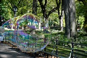 Metal Signs Digital Art Posters - BUBBLE in CENTRAL PARK Poster by Rob Hans