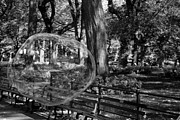 Metal Signs Digital Art Posters - BUBBLE in the PARK in BLACK AND WHITE  Poster by Rob Hans