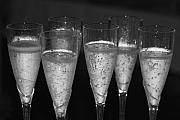 Black-and-white Photo Metal Prints - Bubbly II Metal Print by Bonnes Eyes Fine Art Photography