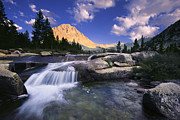Kings Canyon National Park Posters - Bubbs Creek Poster by Brian Ernst