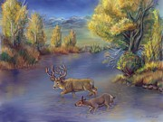 Wyoming Paintings - Buck and Doe Crossing River by Dawn Senior-Trask