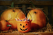 Jack-o-lantern Posters - Bucket filled with halloween candy Poster by Sandra Cunningham