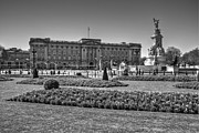 Buckingham Palace Photos - Buckingham Palace London by David French