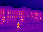 Buckingham Palace Photos - Buckingham Palace, Uk, Thermogram by Tony Mcconnell
