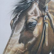 Buckles And Belts In Colored Pencil Print by Carrie L Lewis