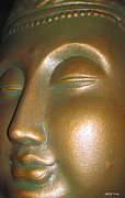 The Buddha Metal Prints - Buddha 25 Metal Print by Cheryl Young