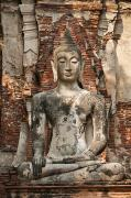 Ayutthaya Framed Prints - Buddha at Wat Mahathat Framed Print by Greg Vaughn - Printscapes