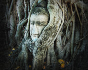 Ayutthaya Prints - Buddha Head Print by Eena Bo